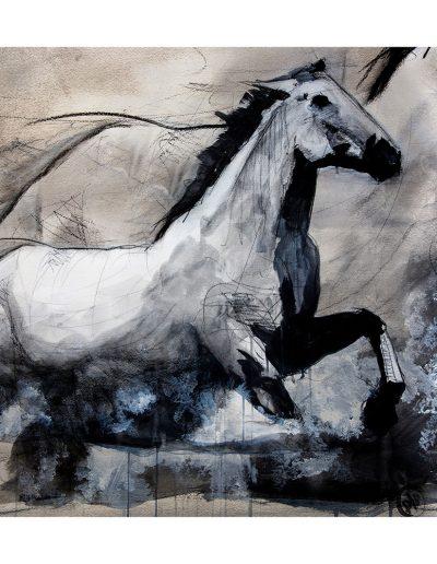 chevaux-extrapolation200