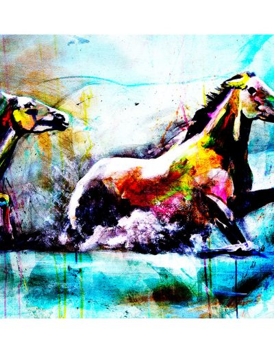 chevaux-extrapolation400